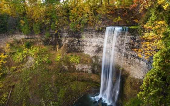 природа, деревья, водопад