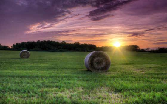 сено, поле, baady, дек, пейзажи -, трава, kwan, закат, jin,