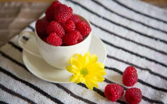 , малина, taza, ягоды, frambuesas,
