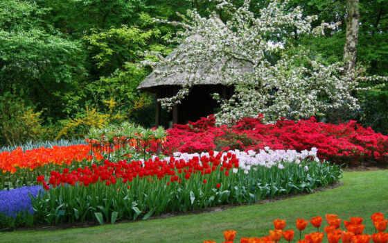 парк, весна, весной