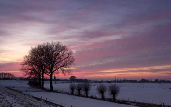 закат, поле, winter