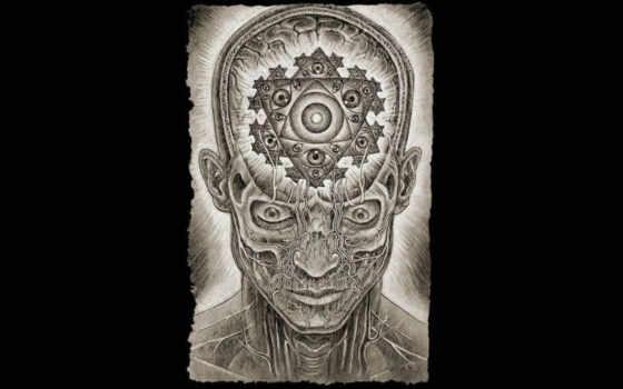 alex, grey, art