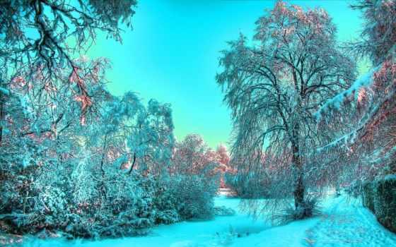winter, красивые, time, года, природа, зимой,