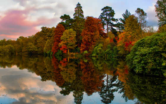 park, garden, осень