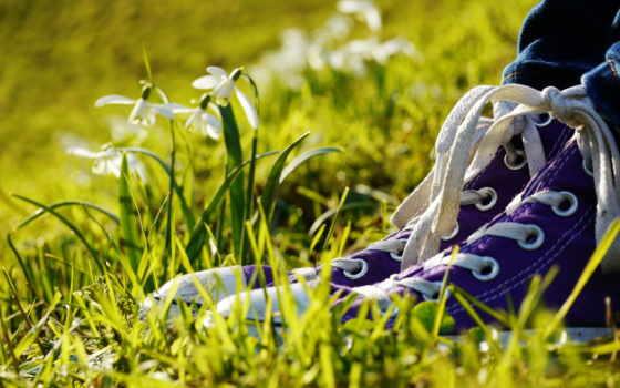 кеды, cvety, ноги, трава, converse, кружева, туфли, макро,