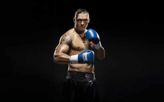 boxing, boxer, чемпион, pin, миро, дуэль, professional, pinterest, антенна
