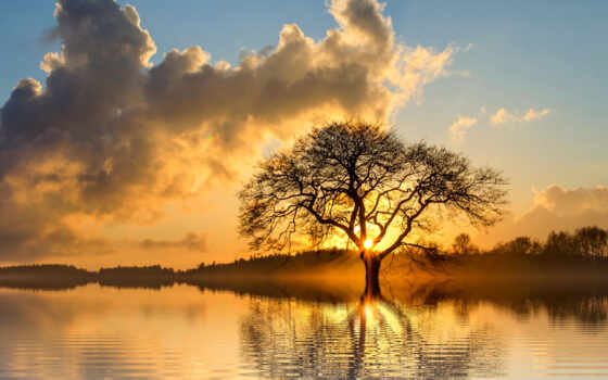 solstice, summer, june, день, впервые, proishodit, northern, free, hemisphere