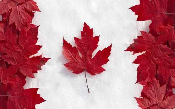 году, канады, канаде, иммиграции, канаду,