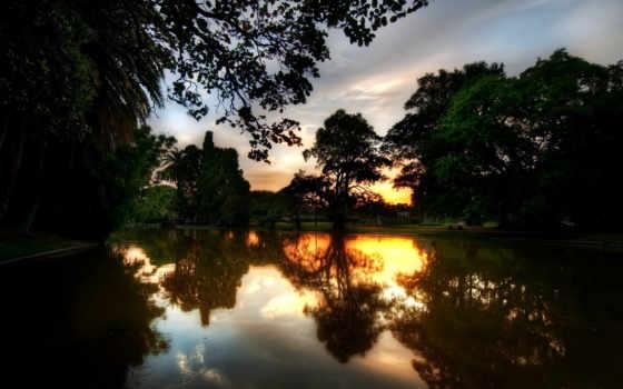 вечер, маслом, landscape, телефон, природа, park, summer, ловят, озеро,