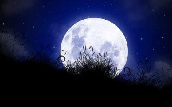 moonlight, google, supernatural, rp, ночь, suggestions, луна, just, keywords,