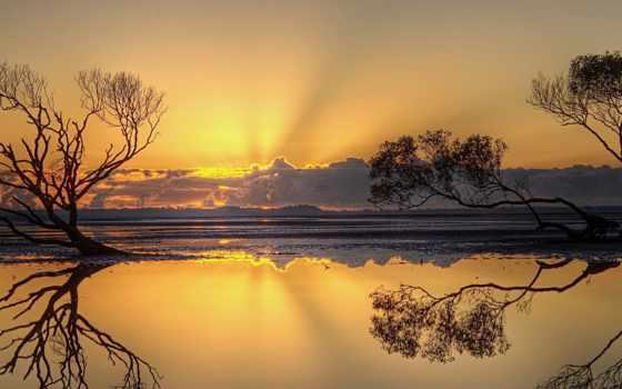 landscape, trees, закат, concept, am, mutlu, фотографий, kaynar,