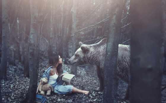 девушка, медведь, мишка, лес, картинка, книги,