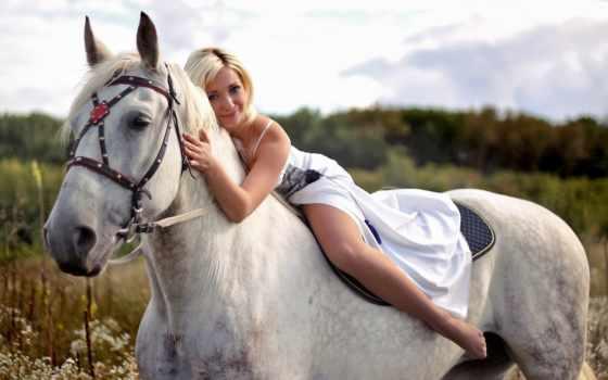 всадник, лошади