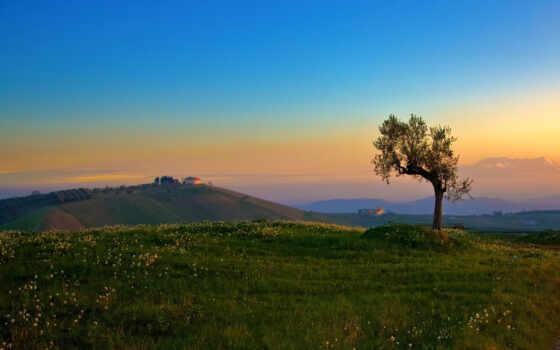 дорога, природа, landscape, поле, работать, собранный, free, качественные, другие, fonwall