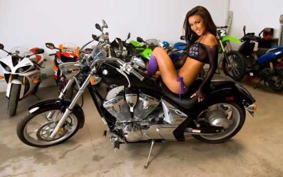 bikes, zerega