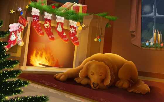 christmas, собака, decorated, домашний, fireplaces, sleeping, любимец, waiting, камина, год, новый,