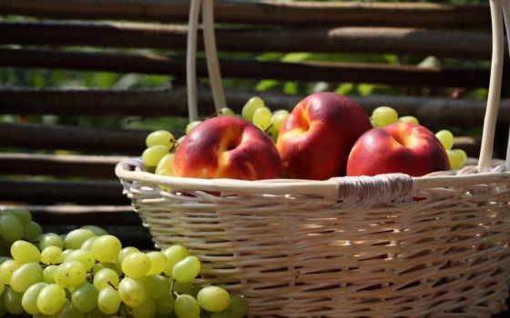 фрукты, корзина, виноград, забор, яблоки, нектарин,