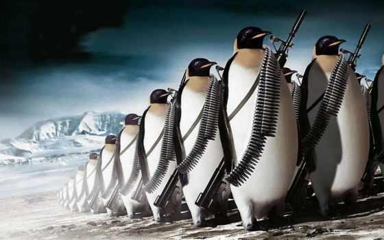 animal, армия, оружие, пистолет, fantasy, винтовка, лед, ammunition, penguins,