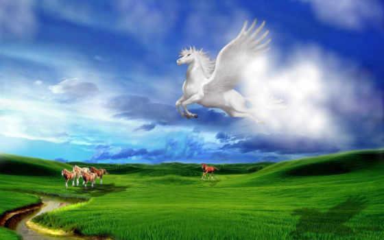 white, лошадь, небо, see, называться
