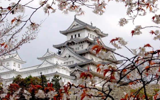 замок, белой, япония, цапли, химэдзи, Сакура, японии, был, мацумото, за, весна, восток, дворец, замка, азия, туристов, древнейших, один, среди, авиабилет, москва,