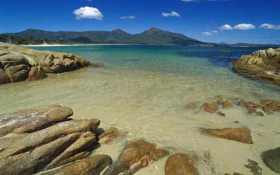 остров, kangaroo, австралия