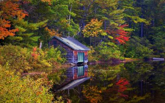 лес, озеро, осень, trees, house, landscape, озера,