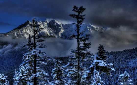 invierno, montañas, bosques, del, nieve, winter, изображение, природа, года, time,