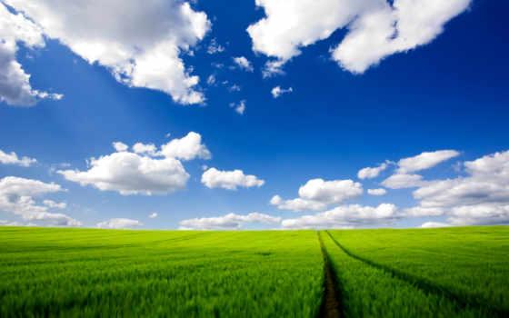 oblaka, небо, зелёный, дорога, margin, белые, трава, поле, природа,