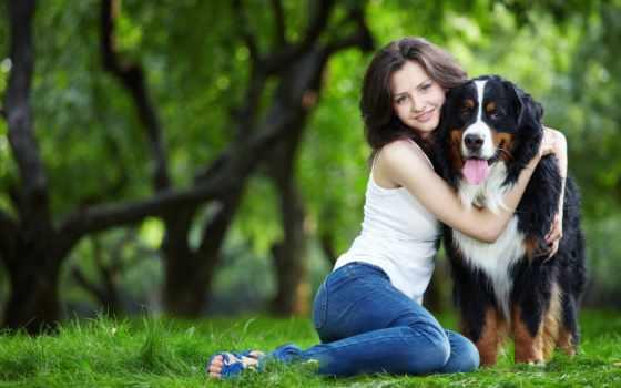 zhivotnye, домашние, мужчина, животных, домашних, человека, обо, собаки, всем, женское, счастье,