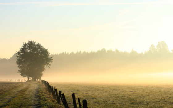 туман, прекрасных