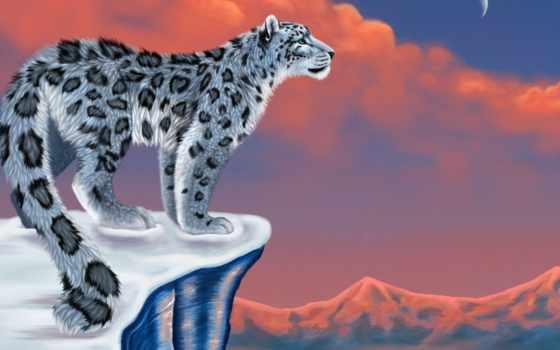 леопард, рисунок, снег