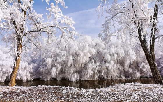 иней, hoarfrost, galaverna, природа, unknown, artist, winter, beppe, река, desktop,