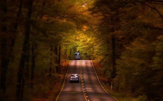 tumblr, лес, авто, осень, мэй,