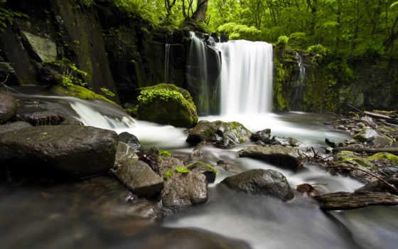 камни, water, растения, водопад, waters, живые, которых, есть, струи, тег,