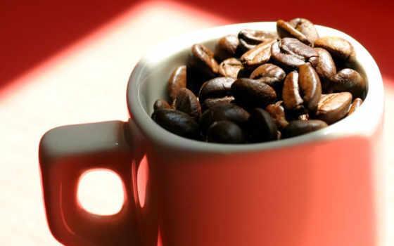 кафе, que, una, del, las, los, como, para,