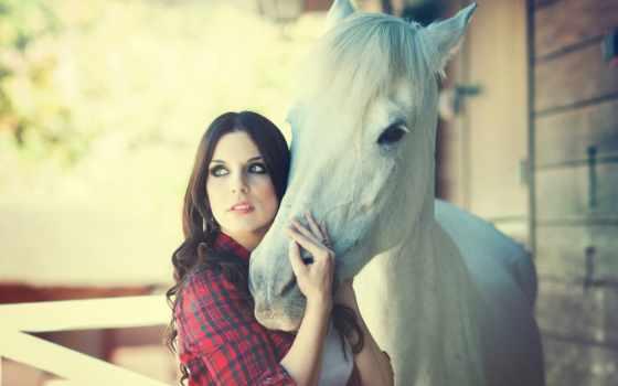 лошадь, девушка, free, настроения, you,