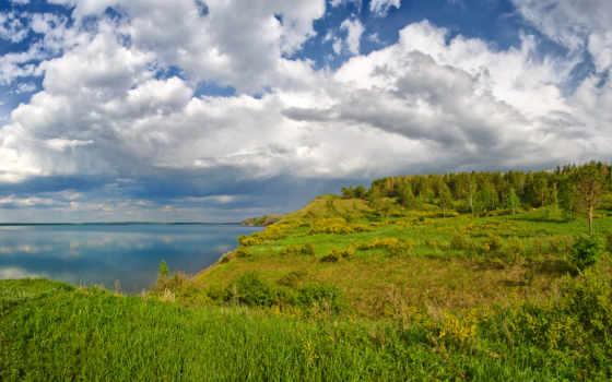 природа, поле,