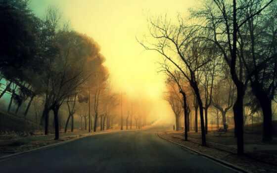road, autumn