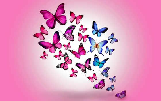 бабочки, розовый, butterflies, colorful, рисованные, рисованное, натяжные, розовые, синие,