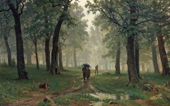 дождь, дубовом, лесу