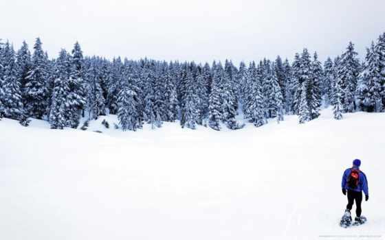 snowshoeing, stock, снегоступы, images, фото, photos, high, найти,