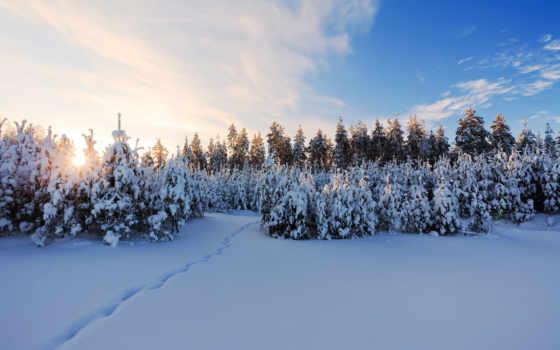 природа, winter, hire, зимняя, пользователя, авто,