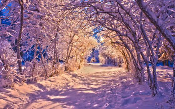 winter, вечер, снег