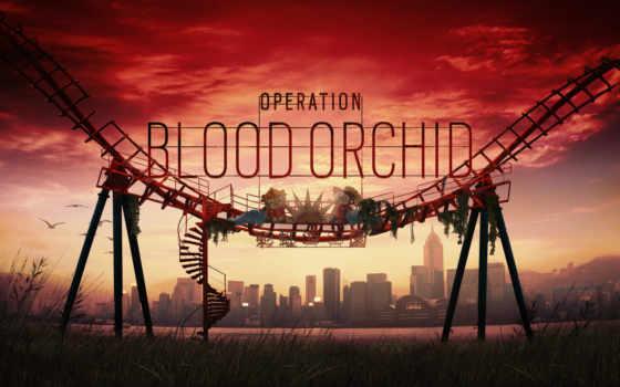 радуга, six, осадный, кровь, орхидея, operation, clancy, tom,