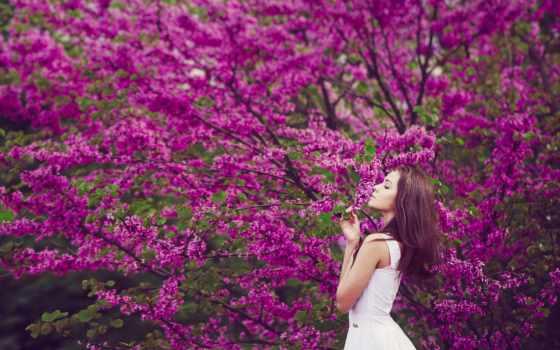 женщина, cvety, девушка, цветами, коллекциях, яndex,
