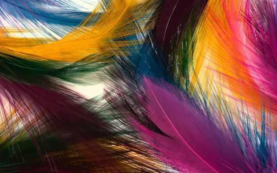 абстракция, абстракции, перья