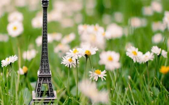 эйфелева, башня, трава