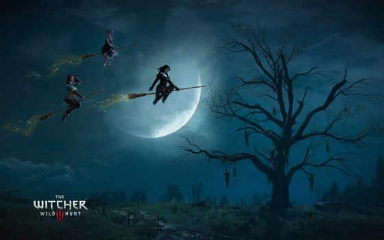 ведьмак, wild, hunt Фон № 126438 разрешение 2560x1600