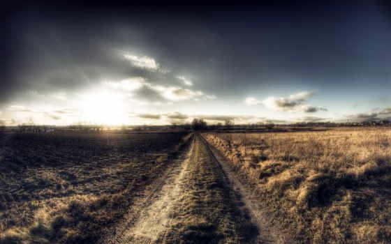 дорога, поле, утро, landscape, природа, trees, runhers, рисунки,