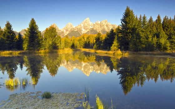 summer, природа, park, яndex, красивые, фотообои, коллекциях, national,